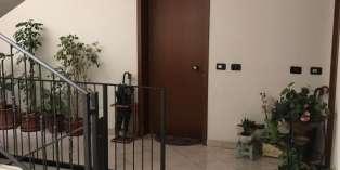 Casa in AFFITTO a Noceto di 60 mq