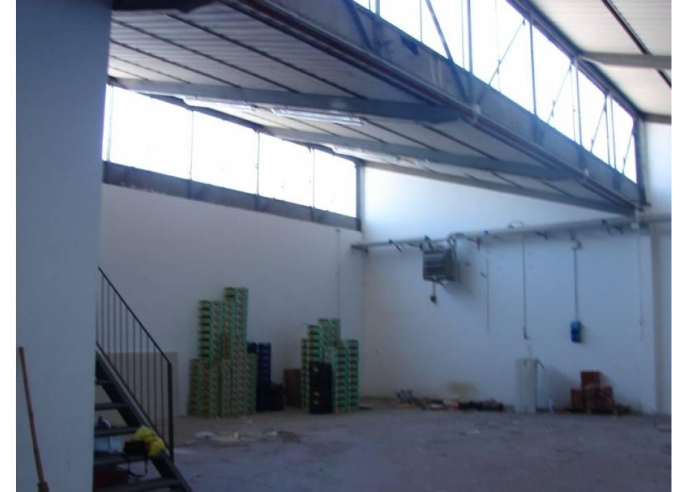 Vendita Locale Commerciale a Parma monolocale Paradigna di 250 mq